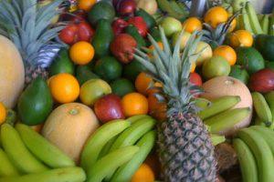 Fruits-brûlent-les graisses