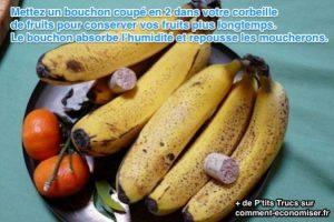 empêcher vos fruits de pourrir